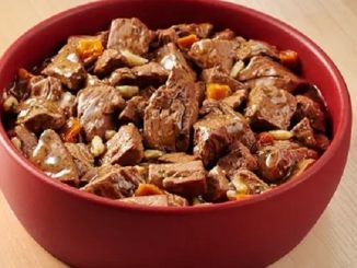 cibo umido cani